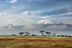 africa trip
